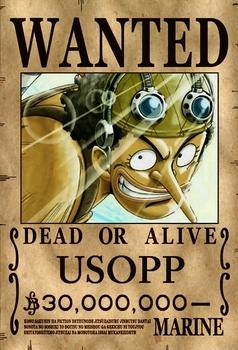 Wanted_Usopp_by_fashion_ladyzz.jpg